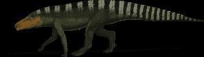 Batrachatomus