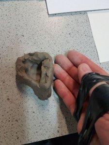 Opposable Thumb
