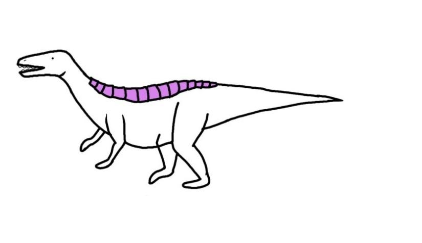 Armoured archosaur