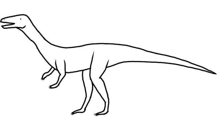 Long legged archosaur